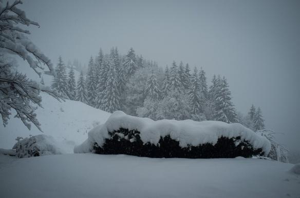 1312_Switzerland-0186