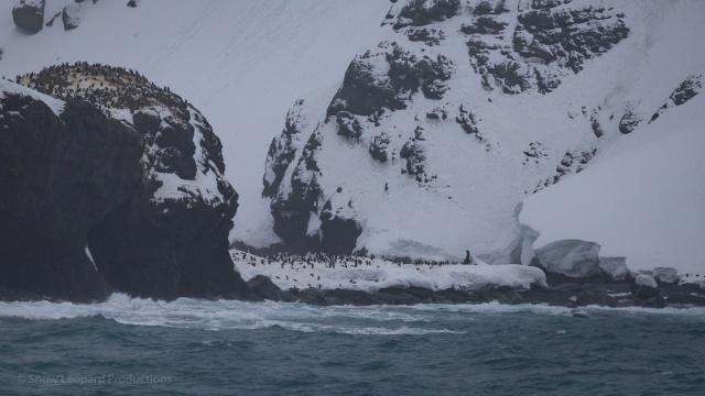 1511_Antarctica-5216
