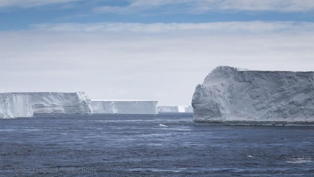 1511_Antarctica-5439