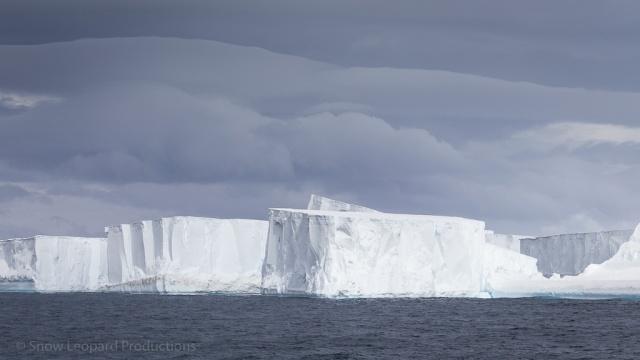 1511_Antarctica-5493