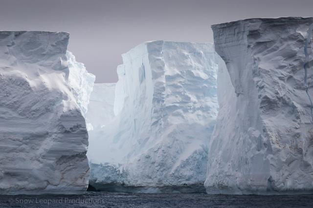 1511_Antarctica-5495