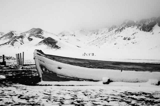 1511_Antarctica-5491-2
