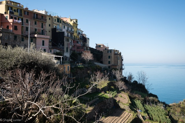 1903_IT_Cinqueterre-0719