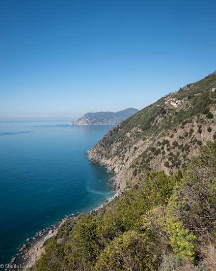 1903_IT_Cinqueterre-0728
